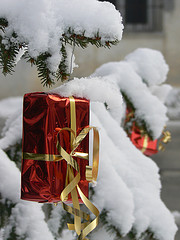 red box with gold ribbon hanging from snow-covered spruce tree