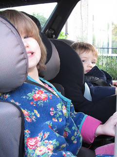 toddlers in car seats in car