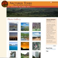 dreamlandtours.org - re-skinned from an HTML site into Wordpress, the client now edits the site and uploads images.dreamlandtours.org