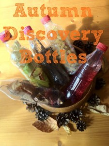 Autumn Sensory Bottles