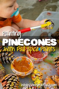 Painting Pine Cones With Fall Spice Paints