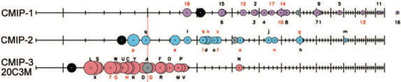 """Extract from figure 1 from Reichler and Kim, 2008. Their caption is """"Performance index I^2 for individual models (circles) and model generations (rows). Best performing  models have low I^2 values and are located toward the left. Circle sizes indicate the length of the 95% confidence  intervals. Letters and numbers identify individual models (see supplemental online material at doi:10.1175/BAMS-89-3-Reichler); flux-corrected models are labeled in red. Grey circles show the average I^2 of all models  within one model group. Black circles indicate the I^2 of the multimodel mean taken over one model group."""