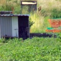 Hedge End allotment sheds attacked again