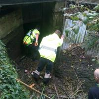 Blockage at Bishopstoke Mill cleared