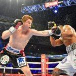Canelo Alvarez Unifies Super Welterweight Division With Unanimous Decision Over Austin Trout