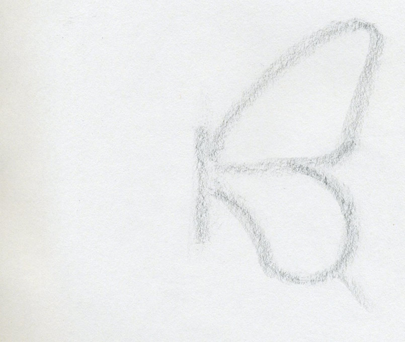 How To Draw A Butterfly  Surprisingly Easy  OK  Let s Draw A Butterfly