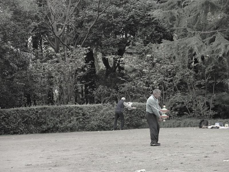 Fuxing Park 8