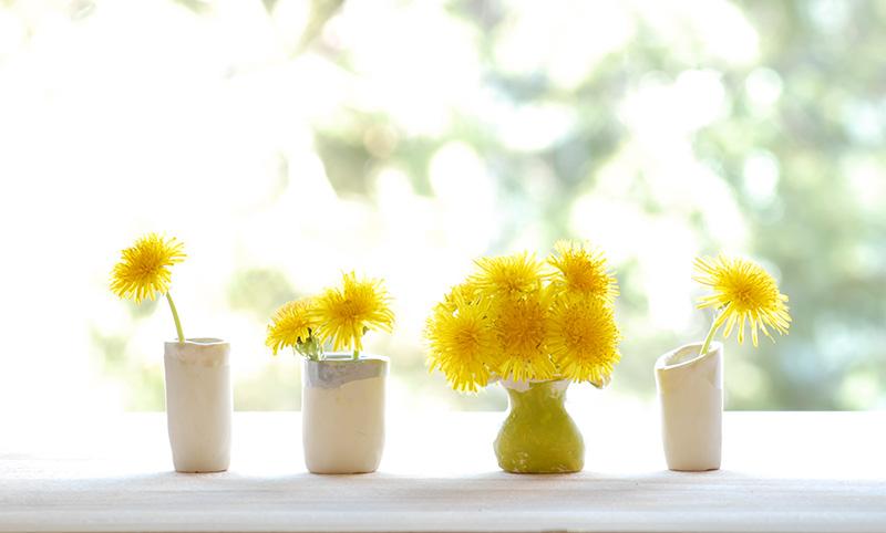 dandelion vases 8