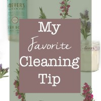 My Favorite Cleaning Tip (and a free gift!)