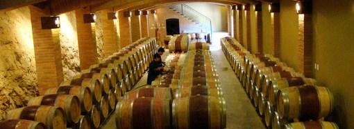 De uvas y vinos