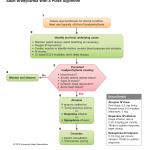 2010-Integrated_Updated-Circulation-ACLS-Bradycardia-Algorithm