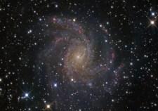 NGC6946_2008wendel800