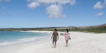 private_beach_walks_1_20130925_1201936167