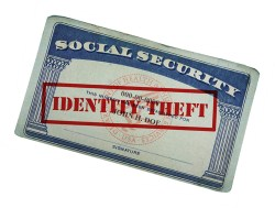 Scam alert: tax time identity theft