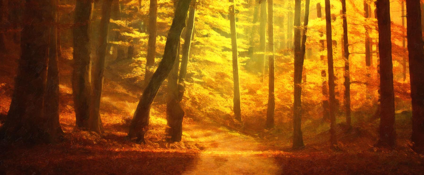 Autumn's Fire by E. C. Spillman
