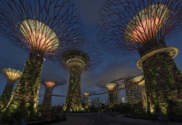 Urban and Landscape Lighting_Gardens by The Bay, Marina South_2