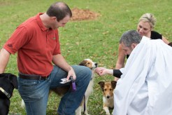 Blessing of the Animals 2013-71