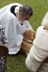 Blessing of the Animals 2013-74