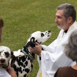 Blessing of the Animals 2013-87