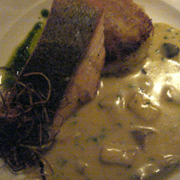 A generous salmon fillet with bubble and squeek, mushroom sauce and a touch of basil oil.