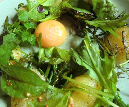 Buttered Heritage potatoes, samphire, Phantassie leaves, hen's egg yolk