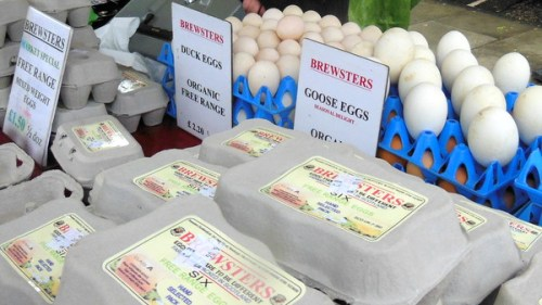 Brewsters' goose, duck and hen eggs