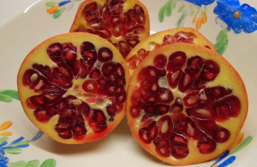 Jewel like Pomegranates