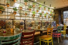 The Basement Bar's restaurant and its wall of herbs.
