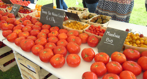 Organic tomatoes from the local region