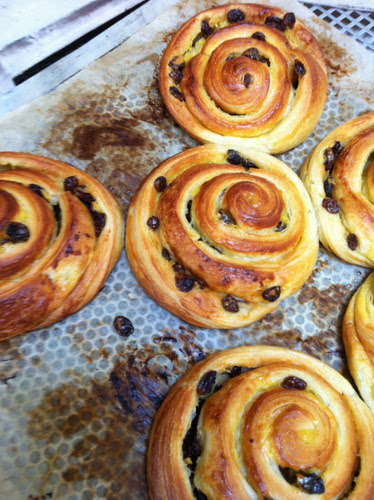 Pain au raisin: I shaped hundreds upon hundreds of these at Breadwinner Bakery and that experience proved very useful. We'd made them just once before back in July. The other classes' Prof declared them excellent and took most of them off for his pupils to enjoy.