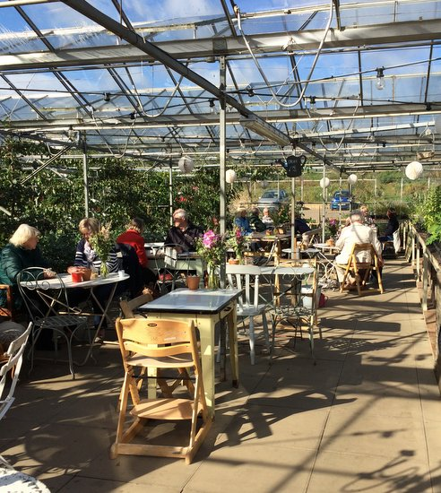The Gazebo, the Secret Herb Garden