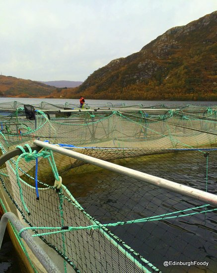 Fresh water fish farm