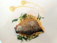 The sea bream of my dreams. The Jerusalem artichoke fricassé was gorgeous.