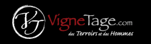Logo VT