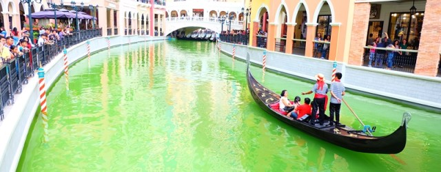 Venice Grand Canal Mckinley