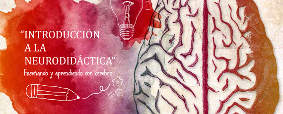 Introduccion a la neurodidactica