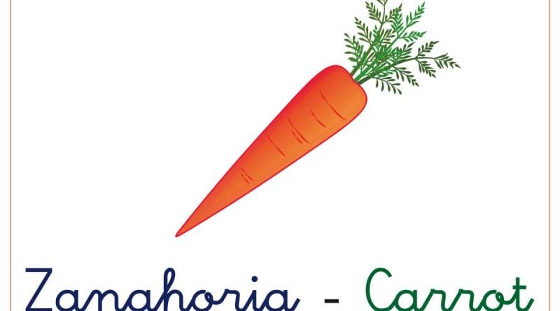 verduras y hortalizas 6
