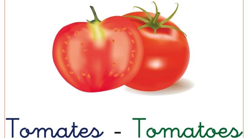 verduras y hortalizas 7