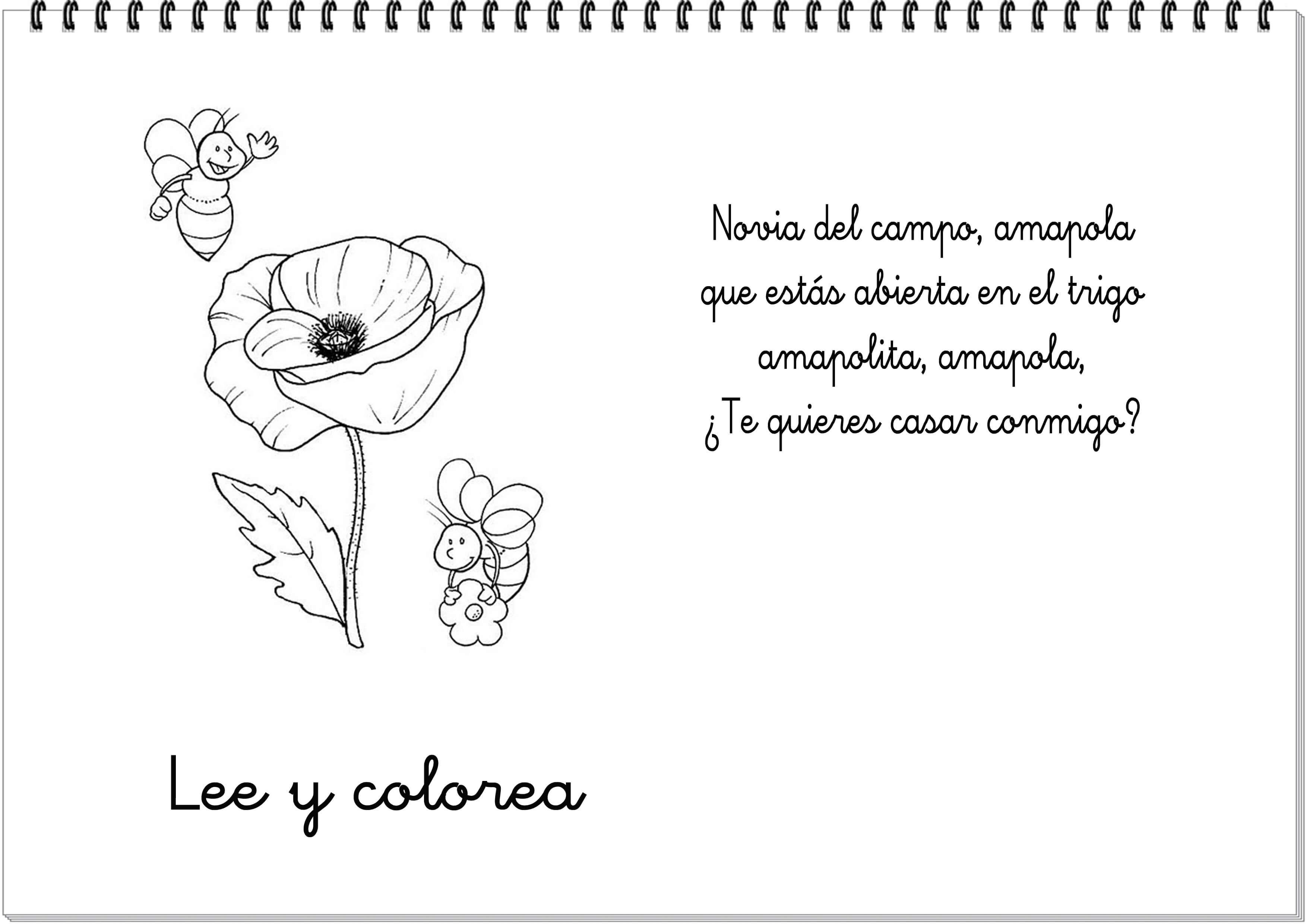 Poema De Graduacion De Universidad Para Mama | apexwallpapers.com