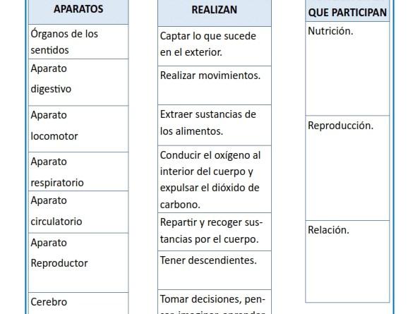 Best Conocimiento Del Medio Cuarto De Primaria Photos - Casas: Ideas ...