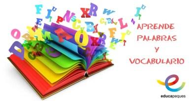 Aprende palabras y vocabulario