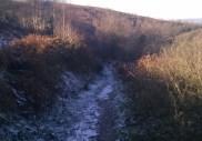 Bridleway to Codden Hill
