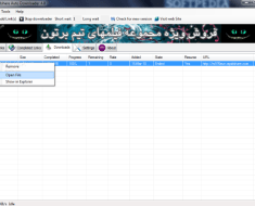 Rapidshare Auto Downloader