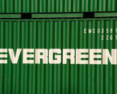 EverGreeen