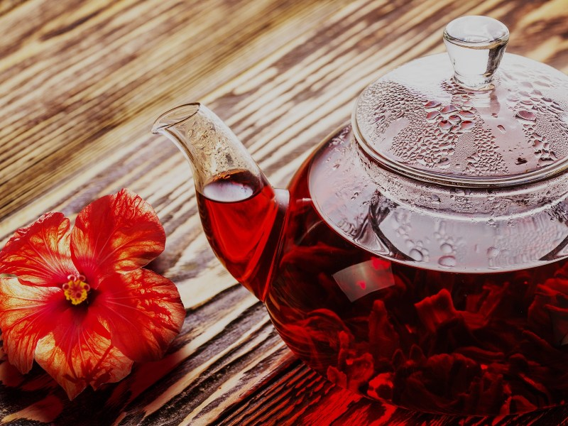Hibiscus tea in transaprent teapot on wooden table. Worldwide popular healthy tea known as rosella karkade or red sorrel.