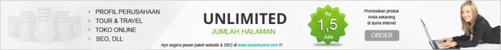 Jasa Pembuatan Website - SEO Murah di Bali