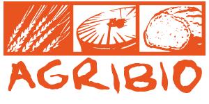 Logo_300-150