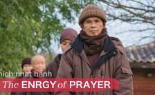 Zen master Thich Nhat Hanh.動画でご紹介するティク・ナット・ハン師の祈りの言葉。The ENERGY of PRAYER