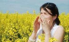 花粉症の季節がやってきましたよ! スピリチュアルな観点から見た花粉症の原因とは?