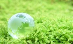 世界が平和になって、生態系をこれ以上破壊せずに、人類が永続できる方法